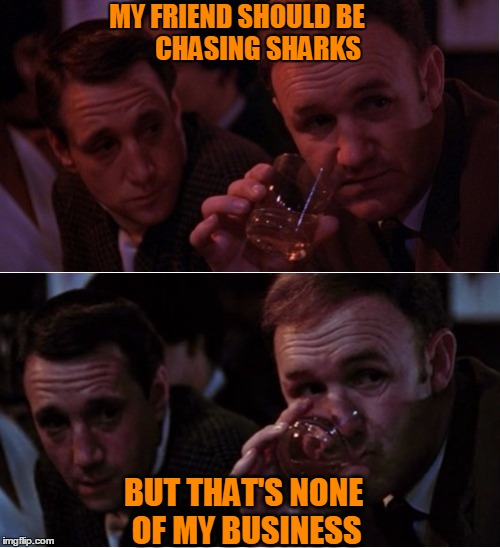 The Jaws Connection | MY FRIEND SHOULD BE        CHASING SHARKS BUT THAT'S NONE OF MY BUSINESS | image tagged in popeye doyle that's my business,popeye doyle,popeye,gene hackman,jaws,roy scheider | made w/ Imgflip meme maker
