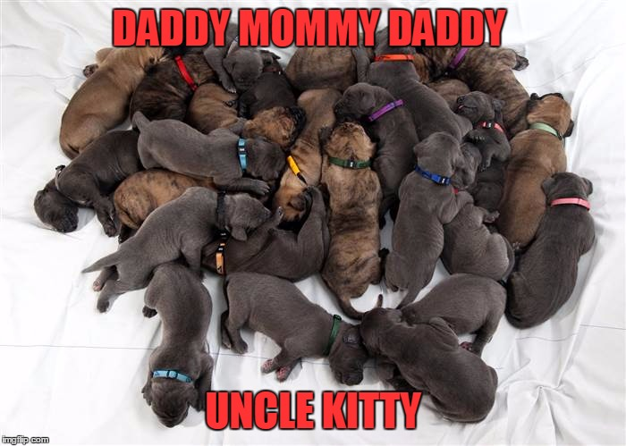 DADDY MOMMY DADDY UNCLE KITTY | made w/ Imgflip meme maker