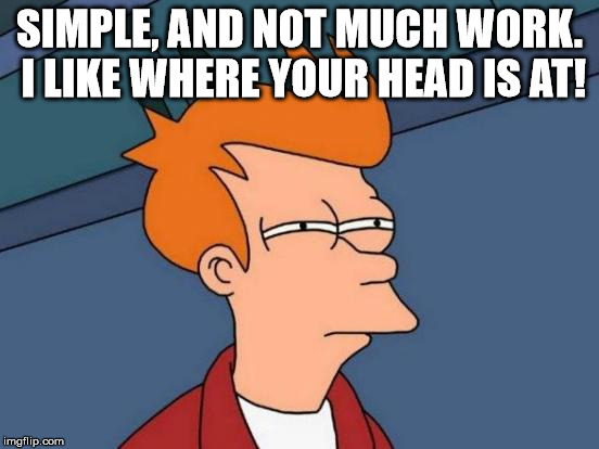 Futurama Fry Meme | SIMPLE, AND NOT MUCH WORK. I LIKE WHERE YOUR HEAD IS AT! | image tagged in memes,futurama fry | made w/ Imgflip meme maker