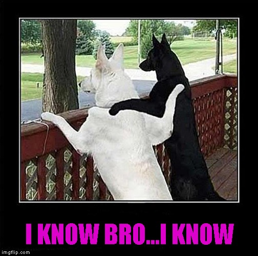 I KNOW BRO...I KNOW | made w/ Imgflip meme maker