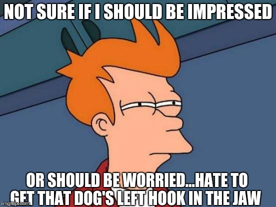 Futurama Fry Meme | NOT SURE IF I SHOULD BE IMPRESSED OR SHOULD BE WORRIED...HATE TO GET THAT DOG'S LEFT HOOK IN THE JAW | image tagged in memes,futurama fry | made w/ Imgflip meme maker