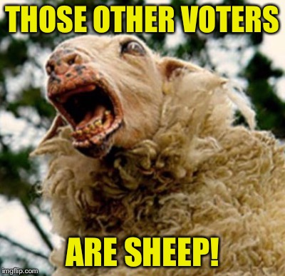 THOSE OTHER VOTERS ARE SHEEP! | image tagged in sheeple | made w/ Imgflip meme maker