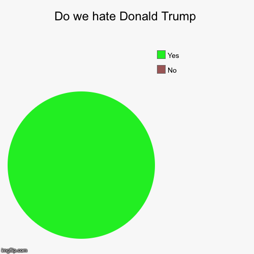 Do we hate Donald Trump | No, Yes | image tagged in funny,pie charts | made w/ Imgflip chart maker