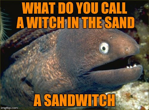 im pretty sure Its a Halloween meme since it is in orange | WHAT DO YOU CALL A WITCH IN THE SAND A SANDWITCH | image tagged in memes,bad joke eel | made w/ Imgflip meme maker