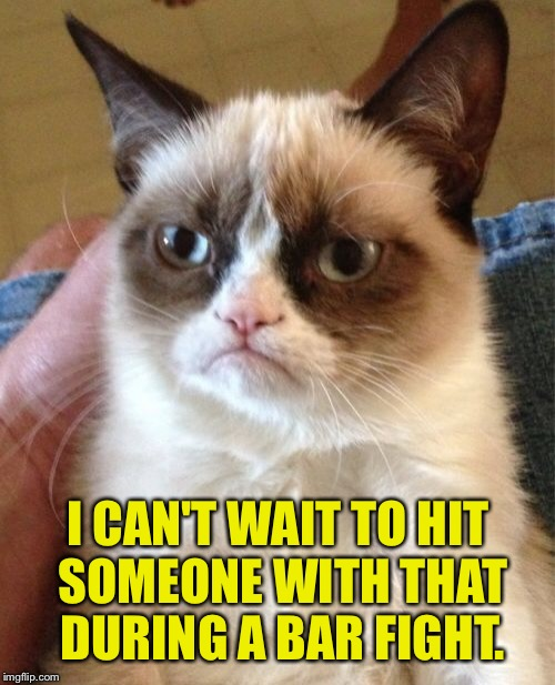 Grumpy Cat Meme | I CAN'T WAIT TO HIT SOMEONE WITH THAT DURING A BAR FIGHT. | image tagged in memes,grumpy cat | made w/ Imgflip meme maker