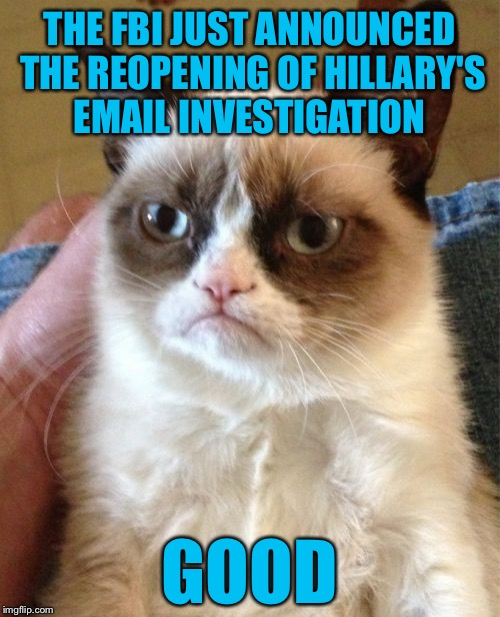With 11 days left before the election, will the mainstream media cover this??? | THE FBI JUST ANNOUNCED THE REOPENING OF HILLARY'S EMAIL INVESTIGATION GOOD | image tagged in memes,grumpy cat,hillary,fbi,email scandal,biased media | made w/ Imgflip meme maker