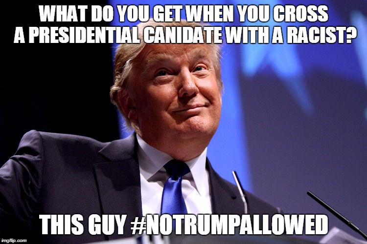 Down with trump | WHAT DO YOU GET WHEN YOU CROSS A PRESIDENTIAL CANIDATE WITH A RACIST? THIS GUY #NOTRUMPALLOWED | image tagged in donald trump | made w/ Imgflip meme maker