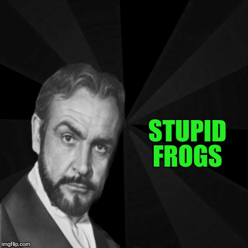 STUPID FROGS | image tagged in sean connery | made w/ Imgflip meme maker