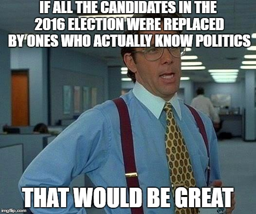 That Would Be Great | IF ALL THE CANDIDATES IN THE 2016 ELECTION WERE REPLACED BY ONES WHO ACTUALLY KNOW POLITICS THAT WOULD BE GREAT | image tagged in that would be great,president,presidential race,president 2016,presidential debate | made w/ Imgflip meme maker