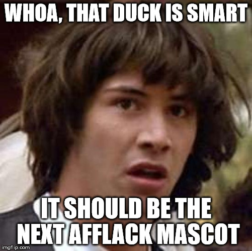 Conspiracy Keanu Meme | WHOA, THAT DUCK IS SMART IT SHOULD BE THE NEXT AFFLACK MASCOT | image tagged in memes,conspiracy keanu | made w/ Imgflip meme maker