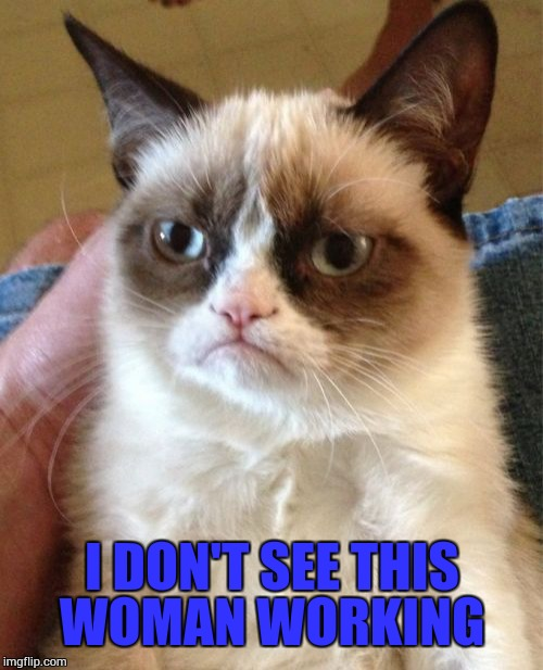 Grumpy Cat Meme | I DON'T SEE THIS WOMAN WORKING | image tagged in memes,grumpy cat | made w/ Imgflip meme maker