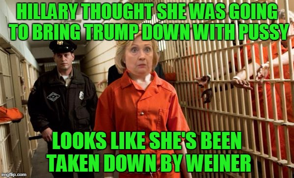 Hillary Jail | HILLARY THOUGHT SHE WAS GOING TO BRING TRUMP DOWN WITH PUSSY LOOKS LIKE SHE'S BEEN TAKEN DOWN BY WEINER | image tagged in hillary jail | made w/ Imgflip meme maker