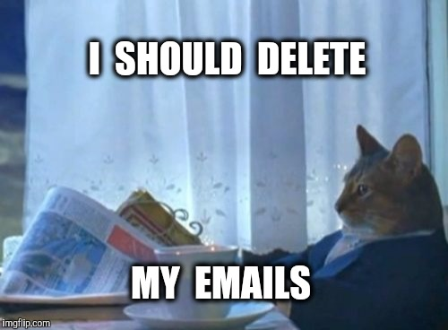 I Should Buy A Boat Cat Meme | I  SHOULD  DELETE MY  EMAILS | image tagged in memes,i should buy a boat cat | made w/ Imgflip meme maker