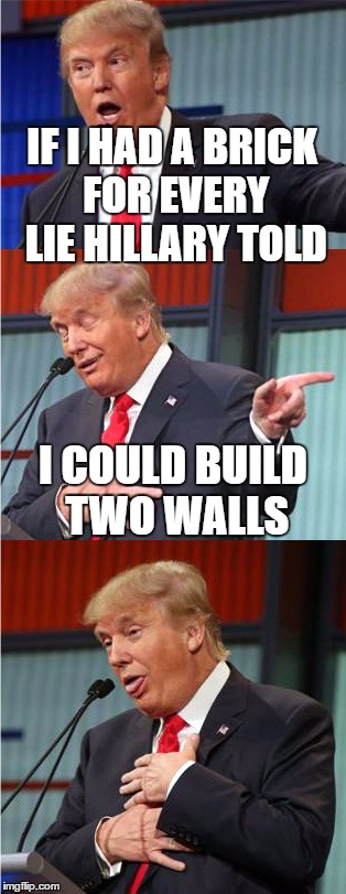 Bad Pun Trump | IF I HAD A BRICK FOR EVERY LIE HILLARY TOLD I COULD BUILD TWO WALLS | image tagged in bad pun trump,hillary clinton | made w/ Imgflip meme maker