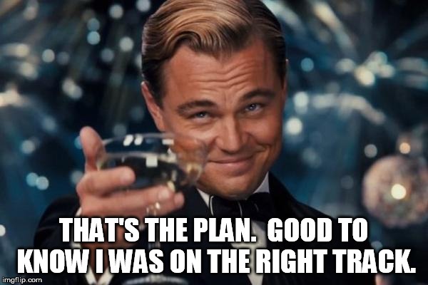Leonardo Dicaprio Cheers Meme | THAT'S THE PLAN.  GOOD TO KNOW I WAS ON THE RIGHT TRACK. | image tagged in memes,leonardo dicaprio cheers | made w/ Imgflip meme maker