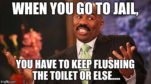 Steve Harvey Meme | WHEN YOU GO TO JAIL, YOU HAVE TO KEEP FLUSHING THE TOILET OR ELSE.... | image tagged in memes,steve harvey | made w/ Imgflip meme maker
