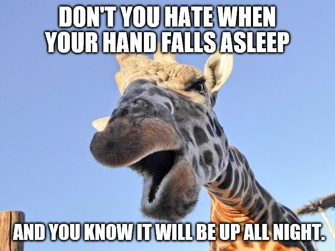 "Giraffe talking ""Don't you hate when your hand falls asleep.... 