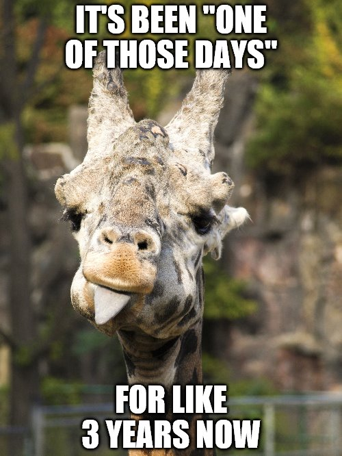"It's Been One Of Those Days | IT'S BEEN ""ONE OF THOSE DAYS"" FOR LIKE 3 YEARS NOW 