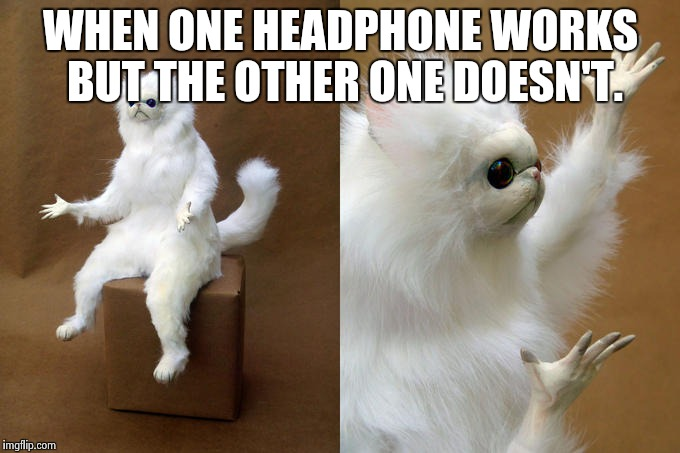 Persian Cat Room Guardian Meme | WHEN ONE HEADPHONE WORKS BUT THE OTHER ONE DOESN'T. | image tagged in memes,persian cat room guardian | made w/ Imgflip meme maker