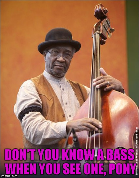 DON'T YOU KNOW A BASS WHEN YOU SEE ONE, PONY | made w/ Imgflip meme maker