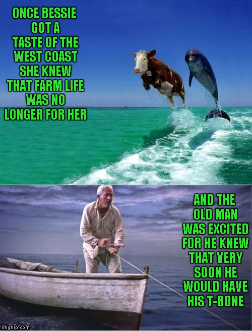 I'm down for a steak already pre-seasoned with sea salt!!! | ONCE BESSIE GOT A TASTE OF THE WEST COAST SHE KNEW THAT FARM LIFE WAS NO LONGER FOR HER AND THE OLD MAN WAS EXCITED FOR HE KNEW THAT VERY SO | image tagged in old man and the sea,memes,funny animals,animals,funny | made w/ Imgflip meme maker