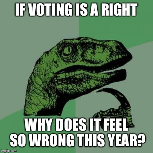 Election 2026 | IF VOTING IS A RIGHT WHY DOES IT FEEL SO WRONG THIS YEAR? | image tagged in memes,philosoraptor,voting,right,wrong | made w/ Imgflip meme maker