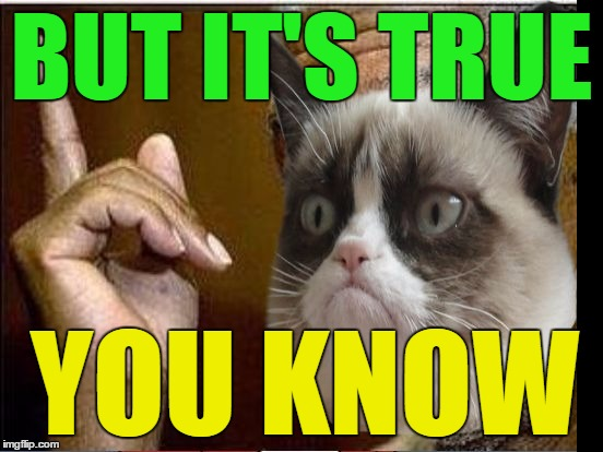 Grumpy Cat He's Right You Know | BUT IT'S TRUE YOU KNOW | image tagged in grumpy cat he's right you know | made w/ Imgflip meme maker
