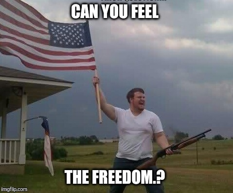 CAN YOU FEEL THE FREEDOM.? | made w/ Imgflip meme maker