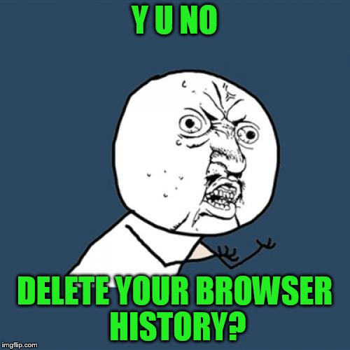 Y U No Meme | Y U NO DELETE YOUR BROWSER HISTORY? | image tagged in memes,y u no | made w/ Imgflip meme maker