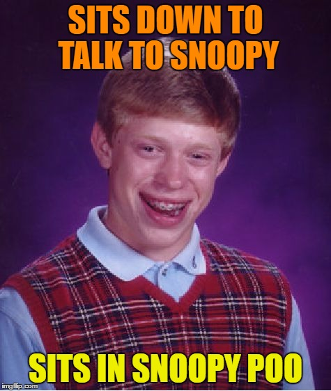 Bad Luck Brian Meme | SITS DOWN TO TALK TO SNOOPY SITS IN SNOOPY POO | image tagged in memes,bad luck brian | made w/ Imgflip meme maker