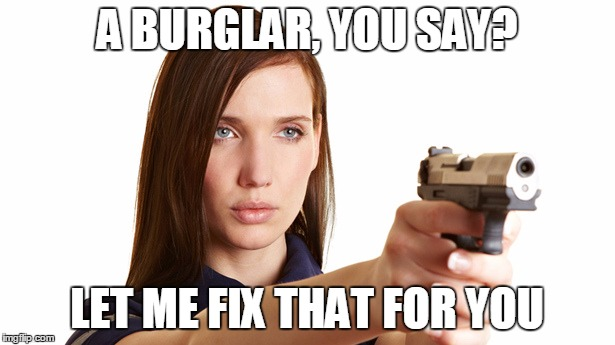 fix that |  A BURGLAR, YOU SAY? LET ME FIX THAT FOR YOU | image tagged in burglar,girl with gun | made w/ Imgflip meme maker