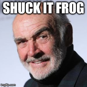 Sean Connery Head Shot | SHUCK IT FROG | image tagged in sean connery head shot | made w/ Imgflip meme maker