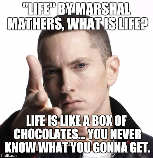 "Eminem video game logic | ""LIFE"" BY MARSHAL MATHERS, WHAT IS LIFE? LIFE IS LIKE A BOX OF CHOCOLATES... YOU NEVER KNOW WHAT YOU GONNA GET. 