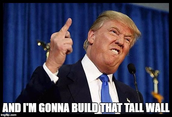 AND I'M GONNA BUILD THAT TALL WALL | made w/ Imgflip meme maker