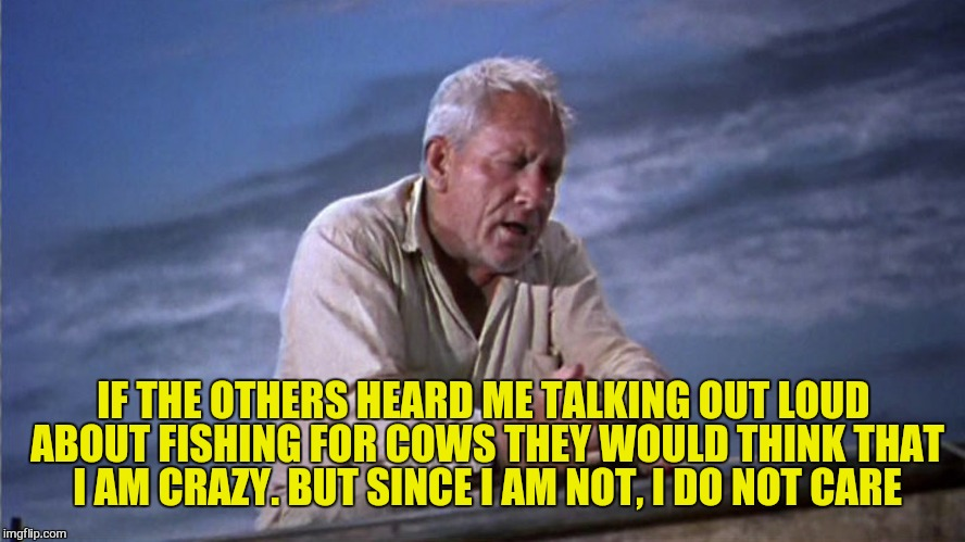 IF THE OTHERS HEARD ME TALKING OUT LOUD ABOUT FISHING FOR COWS THEY WOULD THINK THAT I AM CRAZY. BUT SINCE I AM NOT, I DO NOT CARE | made w/ Imgflip meme maker