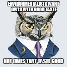 ENVIRONMENTALISTS WANT OWLS WITH GOOD TASTE NOT OWLS THAT TASTE GOOD | made w/ Imgflip meme maker