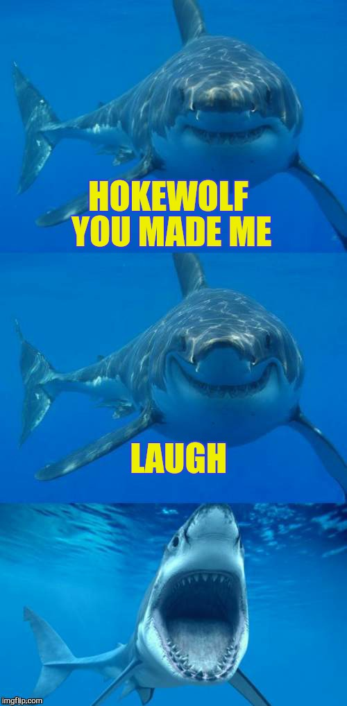 Bad Shark Pun  | HOKEWOLF YOU MADE ME LAUGH | image tagged in bad shark pun | made w/ Imgflip meme maker