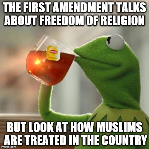 But Thats None Of My Business Meme | THE FIRST AMENDMENT TALKS ABOUT FREEDOM OF RELIGION BUT LOOK AT HOW MUSLIMS ARE TREATED IN THE COUNTRY | image tagged in memes,but thats none of my business,kermit the frog | made w/ Imgflip meme maker