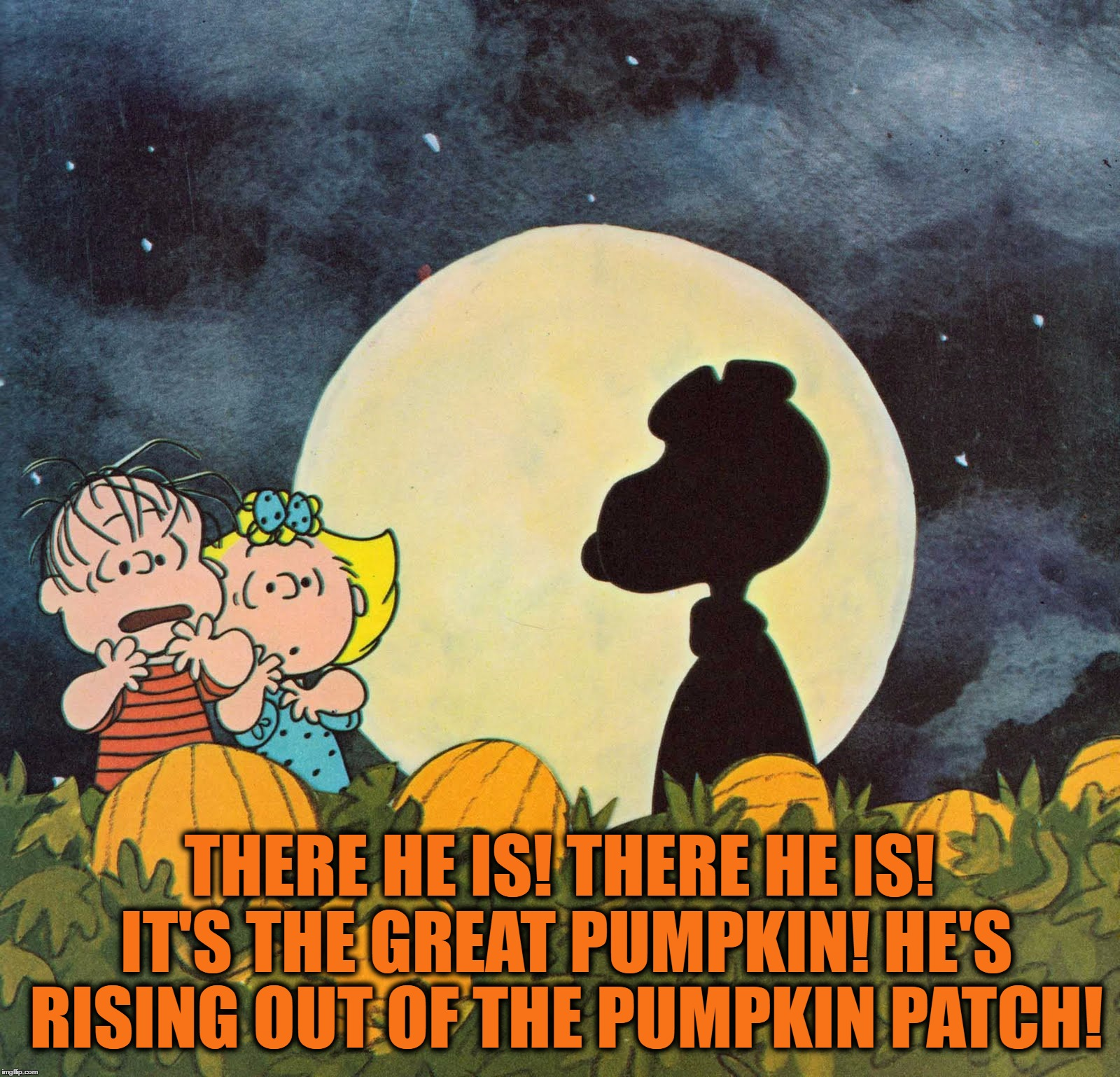 Don't Get Too Excited Linus | THERE HE IS! THERE HE IS! IT'S THE GREAT PUMPKIN! HE'S RISING OUT OF THE PUMPKIN PATCH! | image tagged in memes,funny,halloween,peanuts,the great pumpkin,trick or treat | made w/ Imgflip meme maker