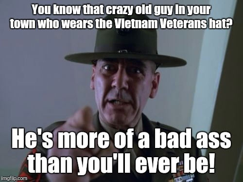 I was going to submit this on Veterans Day. But we don't need a holiday to recognize our nations heroes.  | You know that crazy old guy in your town who wears the Vietnam Veterans hat? He's more of a bad ass than you'll ever be! | image tagged in memes,sergeant hartmann,veterans | made w/ Imgflip meme maker