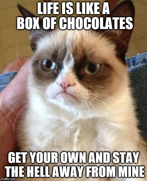 Grumpy Cat Meme | LIFE IS LIKE A BOX OF CHOCOLATES GET YOUR OWN AND STAY THE HELL AWAY FROM MINE | image tagged in memes,grumpy cat | made w/ Imgflip meme maker