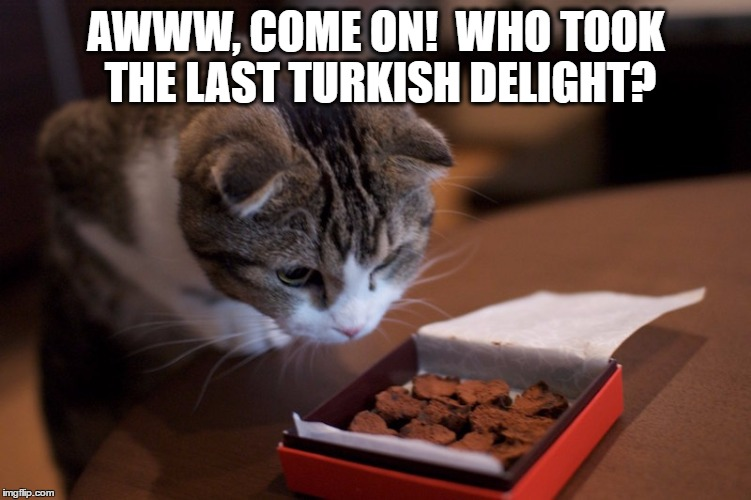 AWWW, COME ON!  WHO TOOK THE LAST TURKISH DELIGHT? | made w/ Imgflip meme maker
