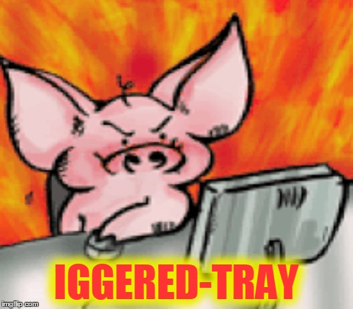 IGGERED-TRAY | made w/ Imgflip meme maker