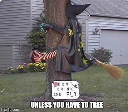 She got wood | UNLESS YOU HAVE TO TREE | image tagged in memes,witch,fail,funny,halloween | made w/ Imgflip meme maker