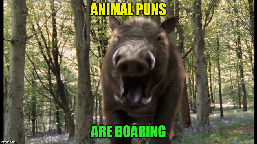 ANIMAL PUNS ARE BOARING | made w/ Imgflip meme maker