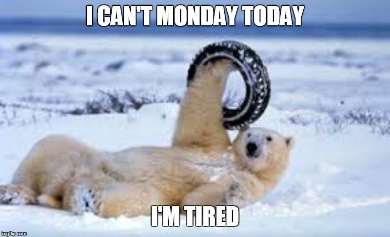 Seriously, who does whitewalls in the Arctic? | I CAN'T MONDAY TODAY I'M TIRED | image tagged in i hate mondays,it's a trap,sad polar bear | made w/ Imgflip meme maker