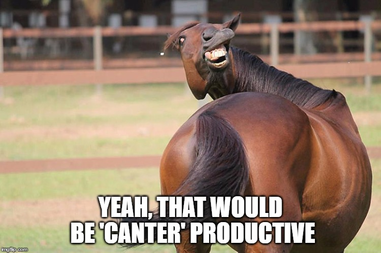 YEAH, THAT WOULD BE 'CANTER' PRODUCTIVE | made w/ Imgflip meme maker