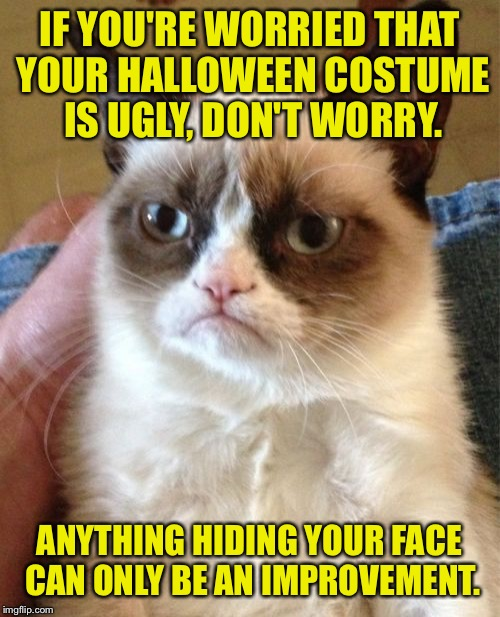 Happy Weinee Hallows everybody! | IF YOU'RE WORRIED THAT YOUR HALLOWEEN COSTUME IS UGLY, DON'T WORRY. ANYTHING HIDING YOUR FACE CAN ONLY BE AN IMPROVEMENT. | image tagged in memes,grumpy cat,halloween,face,funny memes | made w/ Imgflip meme maker