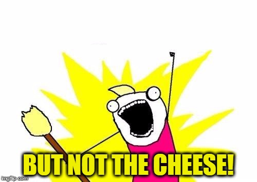 X All The Y Meme | BUT NOT THE CHEESE! | image tagged in memes,x all the y | made w/ Imgflip meme maker