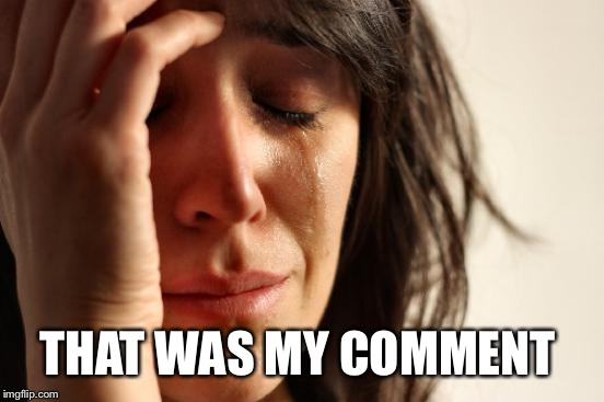 First World Problems Meme | THAT WAS MY COMMENT | image tagged in memes,first world problems | made w/ Imgflip meme maker